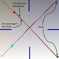 Experimental Setup and Paths of Real Humans and RCAP Agents