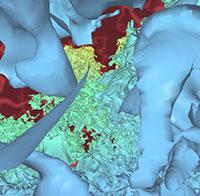 Interactive View-dependent Rendering of Massive Models